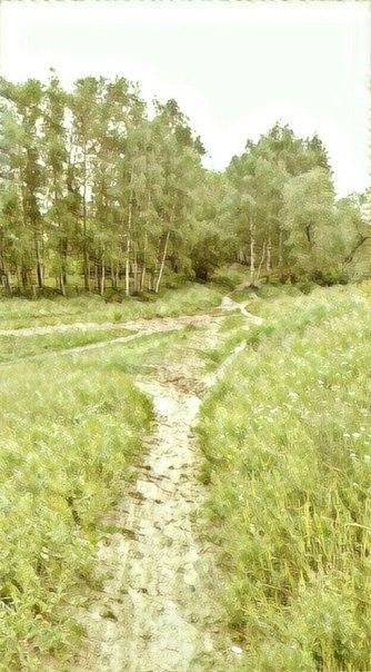 фото из альбома Алексея Тихонова №12