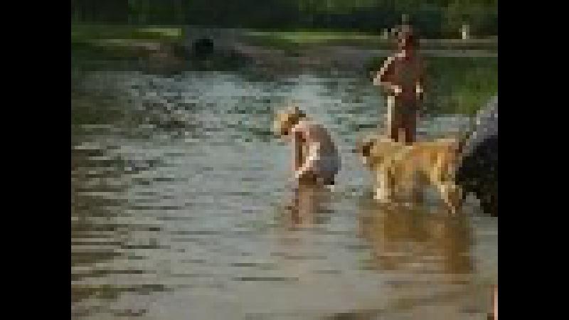 Купание в водоеме парка Есенина 14.08.2007