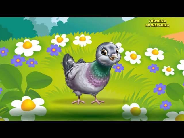 Развивающие мультики для детей. Весело учим животных. Учим названия и голоса жив...