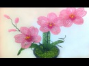 Орхидея из бисера своими руками мастер класс DIY Orchid from beads own hands the master class