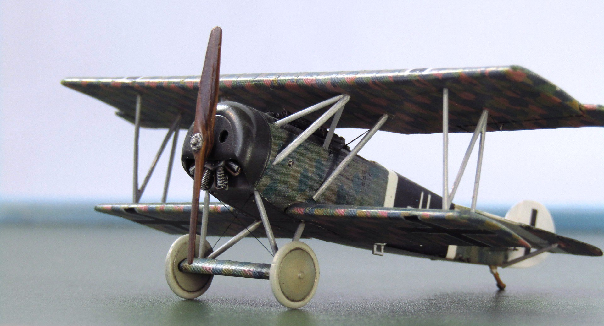 Fokker D.VI 1/72 (Roden)  CCYOo_aiCag