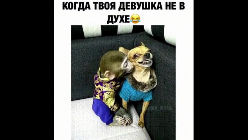 Благие намерения ))