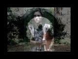 PAN'S LABYRINTH - JAVIER NAVARRETE