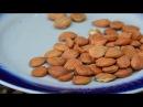 Абрикосы. Польза или вред от абрикосовых косточек