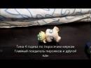 Поп пикси холостяк сезон 1.2 выпуск 3