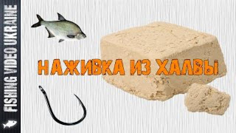Отличная наживка из халвы для ловли карпа, леща, карася и др. | FishingVideoUkraine | 1080p