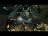 Dark Souls Страж Святилища против золотого следа НГ7, без лечения