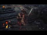 Dark Souls III Хранители Бездны НГ7, без лечения