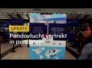 Panda's in pandastijl de lucht in - RTL NIEUWS