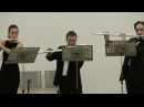W.A.Mozart - The Magic Flute K.620, overture (Flute octet)