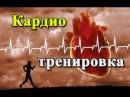 КАРДИО ТРЕНИРОВКА Как правильно делать кардио