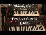Moog Sub 37 vs Prophet 6  Bass