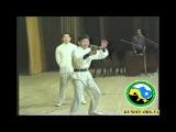 Невероятно. Человек vs камень. Мастер высокого цигун Чен Ван Пэн 1992г, Киев,федерация КУНГФУ 3
