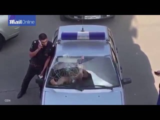 Russian bikini clad woman shatters police car Screen with her feet