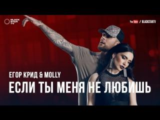 Егор Крид  MOLLY - Если ты меня не любишь  (Video Lyric, Текст Песни)