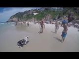 Собакен который любит футбол (VHS Video)