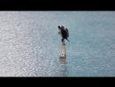 Баклан на Теплом озере часть 2
