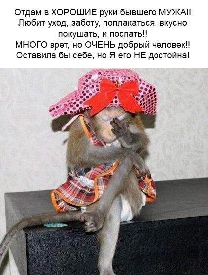 https://pp.userapi.com/c637124/v637124754/50efc/Fd6yMmZa_9o.jpg