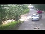 Животные на дорогах!! Китай