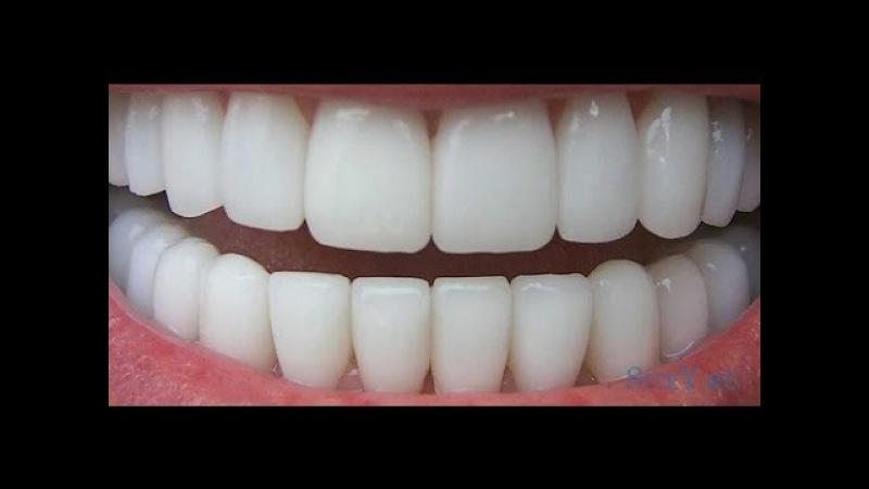 Трехлебов Как вырастить новые зубы