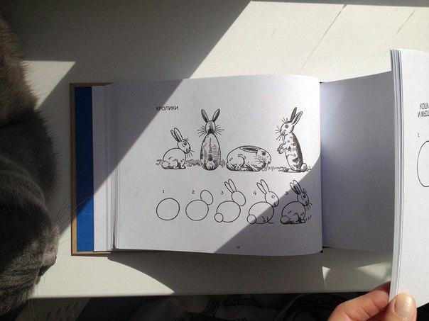 Книга «Начни рисовать» Эдвина Лутца