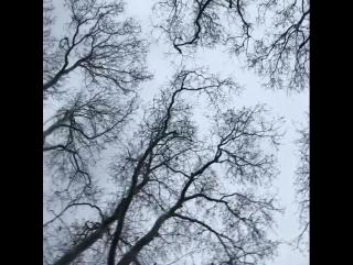 Новое видео в Instagram от Вильдан Атасевер (Хюмашах Султан)