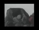 Югославская трагедия - геноцид сербов, усташи, осада Сараева, резня в Сребренице, Анте Павелич, Косово, Ратко Младич, Радован Ка
