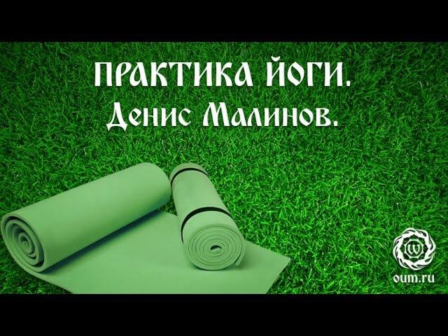 Йога для начинающих. Видео уроки. Практика йоги. Базовый комплекс. Денис Малинов