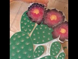 Printmaking artist Lili Arnold Studios print of an Opuntia polyacantha cactus