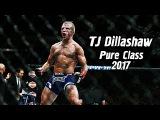TJ Dillashaw - Pure Class UFC  HighlightsKnockout 2017 HD