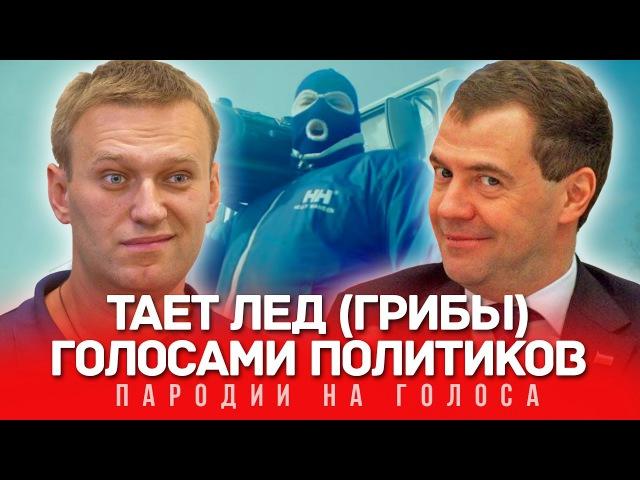 ТАЕТ ЛЁД Голосами Политиков (Грибы)