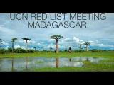 Turtle Conservancy - IUCN Red List Meeting Madagascar 2007-2008
