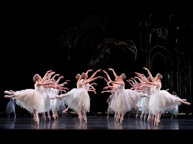 Swan Lake: Corps de Ballet (The Royal Ballet)