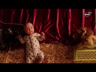 BBC: Тайная жизнь детей (2014) HD 720