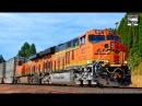 BNSF Trains!