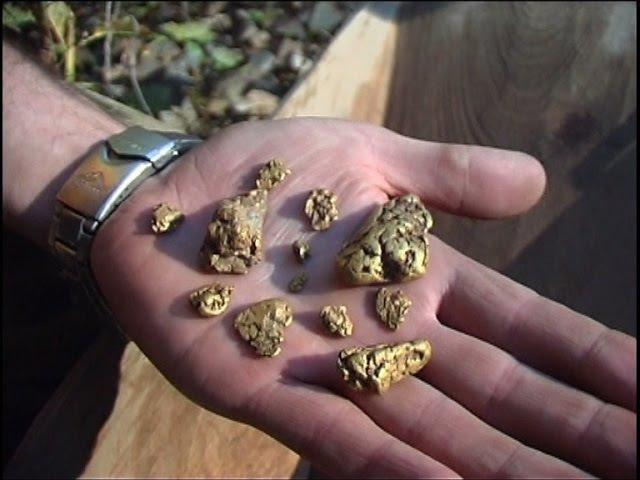 Охота за золотом. Где и как искать золотые самородки. Добыча золота своими силами.