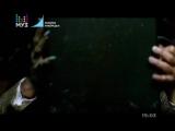 Backstreet boys - Everybody - Муз ТВ