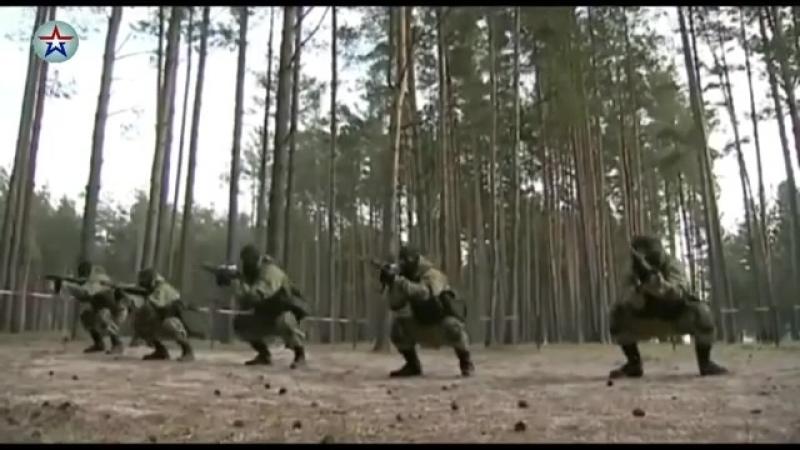 News_arm тренировки спецов