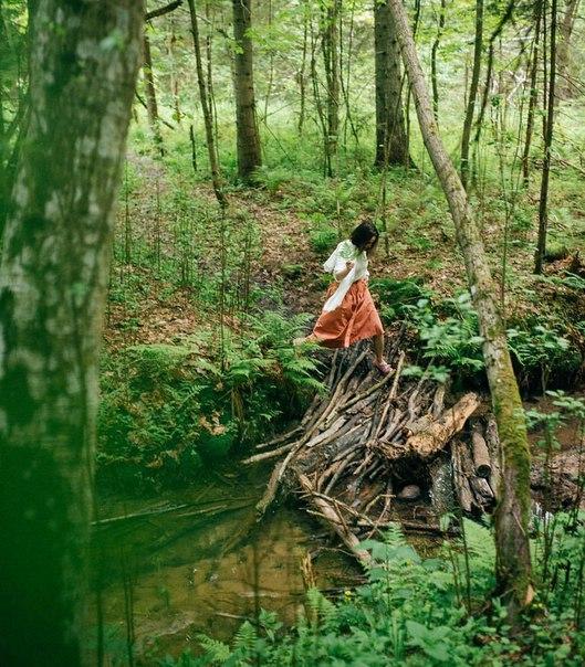 Качать mp3 утро в лесу