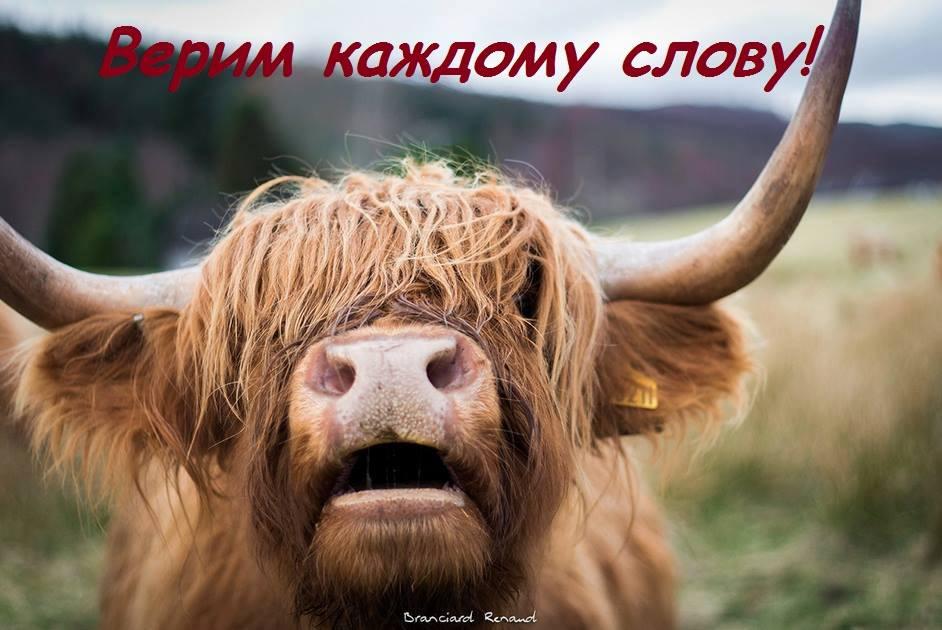 Средняя зарплата в Украине в августе составила 5,2 тыс. грн, - Госстат - Цензор.НЕТ 9561