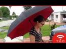 0852 8533 6099 Jual Payung terbalik kazbrella Grosir
