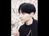 BTS J-HOPE TRIBUTE Try Not To Fangirl - Crazy In Love