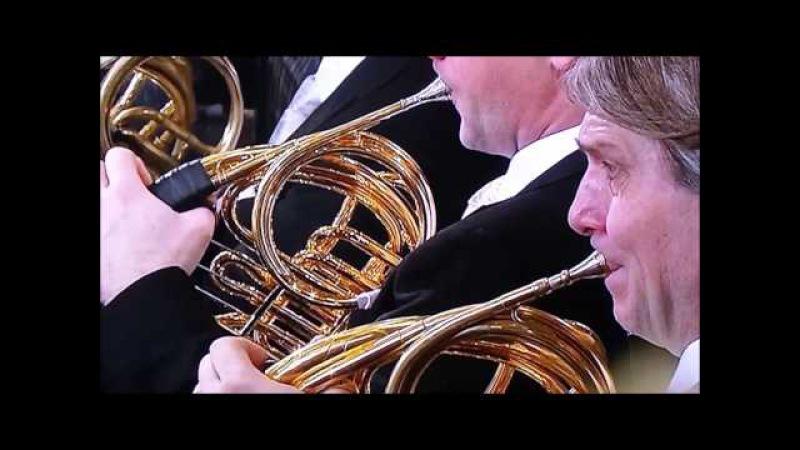 Concierto de Año Nuevo 2017 Filarmónica de Viena El Danubio Azul