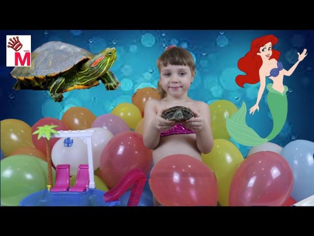 Живая черепаха в ванне исполняет желания превращение в русалку ванна из шаров с