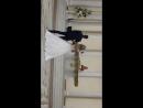 07.10.2016г. Екатерининский зал. Федоровы