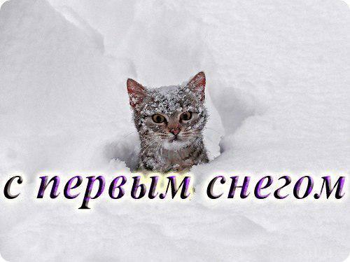 Картинки с надписями и тебя с первым снегом