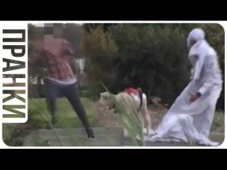 СТРАШНЫЕ РОЗЫГРЫШИ над людьми! Араб с бомбой и бараном НОВИНКА ЮМОР ВОЛНА 6
