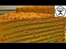 Медовик Медовый торт Домашний видео рецепт торта Медовый с заварным кремом Honey cake