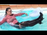 The best wetlook compilation from the the web very sensual lady's swimming fully clothed 1