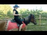 Иго-го, лошадка